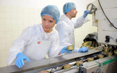 HACCP Base